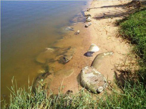 Lagune de Bè bon 493x370 - Extraction de sable dans la lagune de Bè: les riverains se plaignent des dégâts