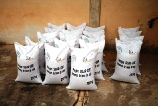 Distribution semences 3 bon 553x370 - Promouvoir la filière Soja: le gouvernement distribue des semences certifiées aux producteurs
