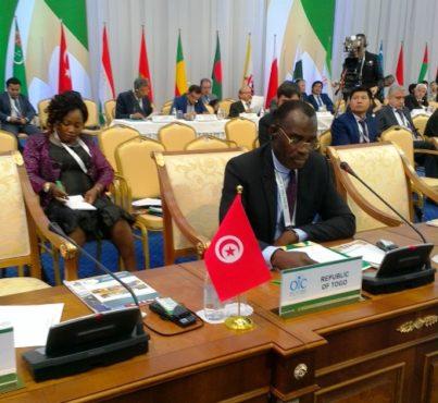 Séjour ministre Ihou bon 403x370 - Investir dans l'industrie : le ministre Ihou a présenté les potentialités du Togo à Astana