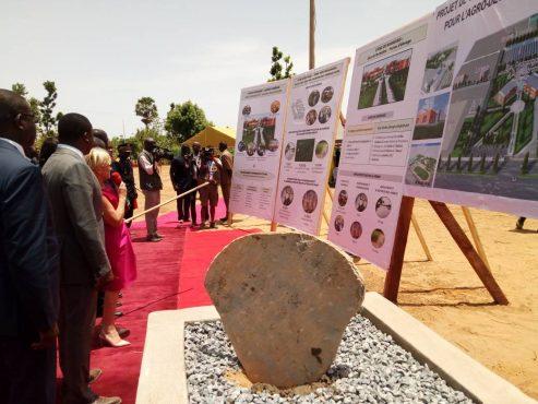 IMG 20180514 WA0072 493x370 - Faure Gnassingbé pose la première pierre d'un Institut de Formation pour l'Agro-Développement à Barkoissi