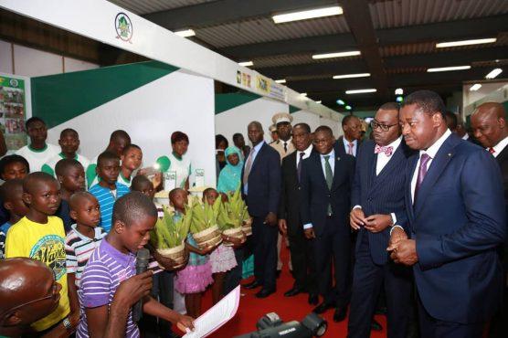 IMG 20180626 WA0033 556x370 - Faure Gnassingbé lance MIFA, un mécanisme révolutionnaire du secteur agricole togolais
