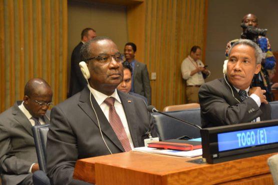 IMG 20180716 WA0019 555x370 - Forum politique de haut niveau sur les ODD: Klassou présente l'expérience du Togo