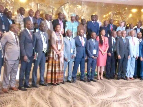 IMG 20180723 WA0020 493x370 - Lomé accueille la 2e réunion d'évaluation du Free Roaming en Afrique de l'Ouest