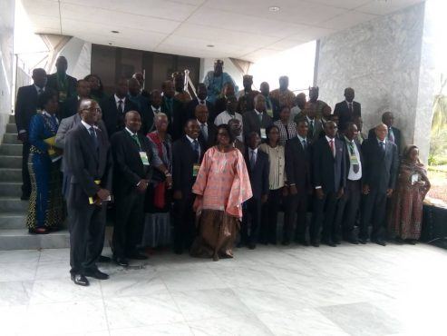 IMG 20181029 WA0012 493x370 - Le Réseau africain des experts et professionnels en commande publique en gestation à Lomé