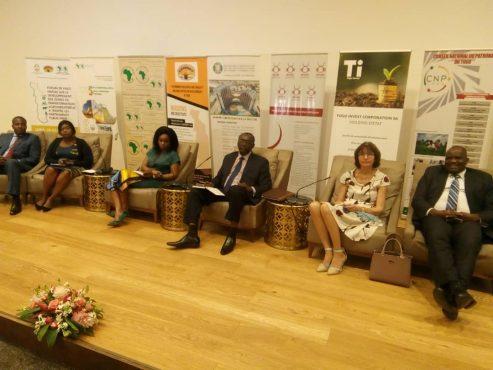 fin du forum sur lagro industrie 493x370 - Forum sur l'agro-industrie au Togo : « un bel exemple qui doit être suivi par les autres pays de l'UEMOA », Khady Evelyne N'Diaye