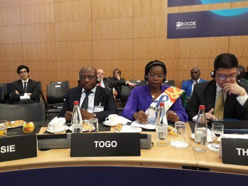 reunion OCDE 493x370 - Le Togo  présent à la 5è réunion du comité directeur de l'OCDE