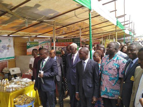fb724689fdf591b9982252b66ec91f1d XL 494x370 - Agriculture :les travaux du 12 ème Forum national du paysan togolais s'ouvrent à Kara