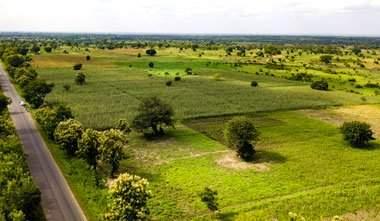 Agropole Kara - Agriculture: le Togo va lancer une pépinière d'entreprises autour de l'agropole de Kara