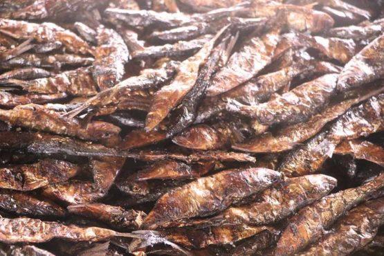 Poissons fumés 555x370 - Au Togo, 41% des produits de pêche sont fumés