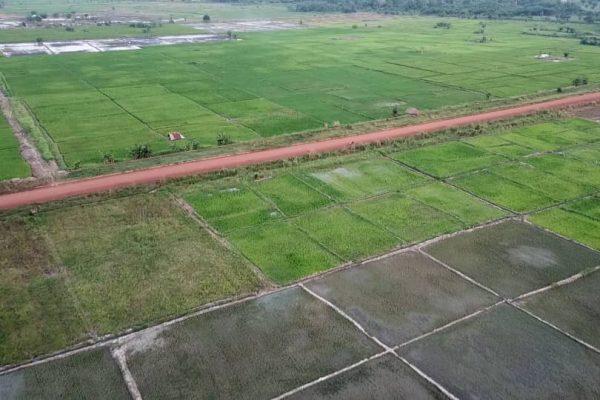 Aménagement hydroagricole de Mission Tové - Agriculture: ZAAP, agropoles, aménagements hydro-agricoles, dessouchage, la stratégie de l'Etat pour mettre en valeur les terres arables