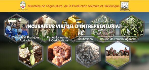 Cours en ligne MAPAH 600x283 - Le MAPAH lance des cours en ligne pour les centres de formation agricole et rurale