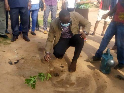 Kamal Adyayi 493x370 - Journée de l'arbre : 1000 plants mis en terre dans la commune Golfe 3