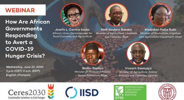 Weibinar 600x326 - Eviter une crise alimentaire due au Covid-19: Bataka partage l'expérience du Togo avec ses pairs africains
