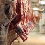 bétail viande 2 150x150 - Togo/ Un coup d'accélérateur à la filière bétail-viande