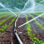 kits dirrigation 150x150 - Agriculture: le gouvernement mise sur la production contre-saison
