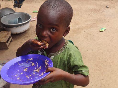 Faim et malnutrition 493x370 - Togo/ Un plan stratégique intersectoriel pour éliminer la faim et la malnutrition
