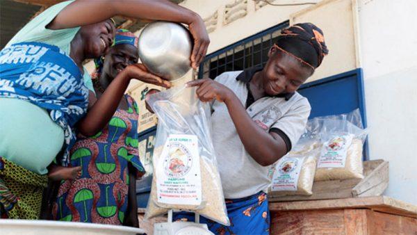 PPAAO Togo 600x338 - PPAAO: huit années de mise en œuvre et un impact avéré sur l'agriculture togolaise