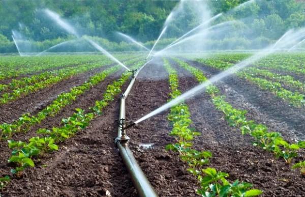 Kits dirrigation photo - Agriculture: le Togo promeut des systèmes d'irrigation solaire