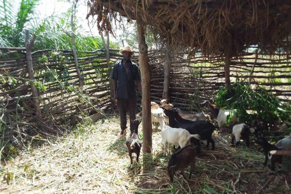 Lakte Pataki 600x400 - Togo/: A Koudjodolou (Assoli), les jeunes s'en sortent grâce au projet EJV