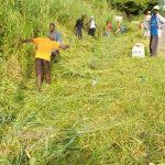 cantonnage archives bon 150x150 - Togo/ Cantonnage dans la région Centrale: 1 254 Km de voie entretenus en 2020