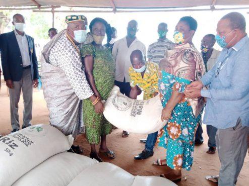 Distribution semences certifiees 494x370 - Togo/ Don de semences certifiées à 1000 agriculteurs de Vo